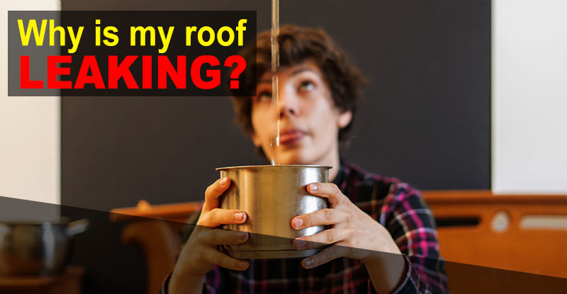 Leaking Roof Dripping